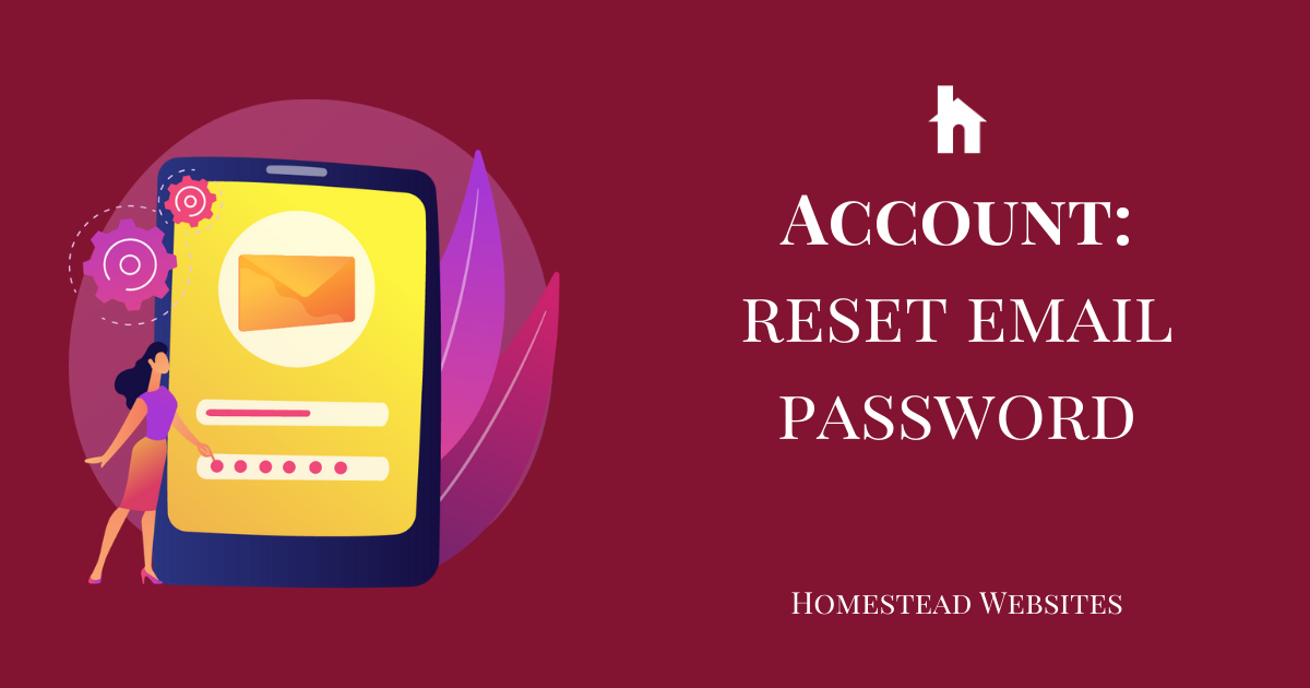 Account: Reset Email Password