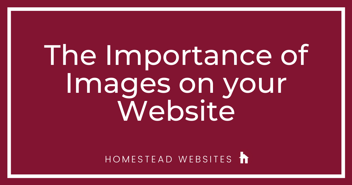 The Importance of Images on your Website