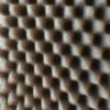 xalbox's profile