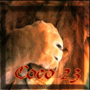 COCO23