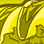 CEAdmin's profile
