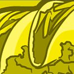 GMarsack's profile