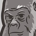 mmorris's profile