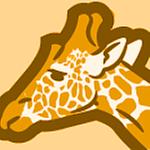 SFGMedia's profile