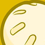 Vida's profile