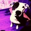 lukasz_3958438's profile