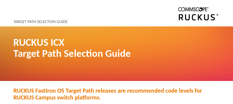 What code should I run on my ICX? Check the Target Path Selection Guide!