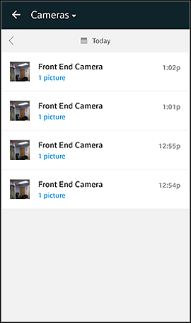 Cameras screen with pictures and videos organized by time and date.