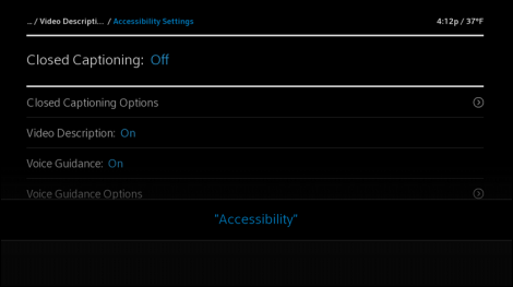 Access the Accessibility Settings menu using voice commands.