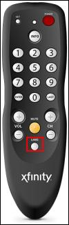 The DTA remote, black with white and red buttons.