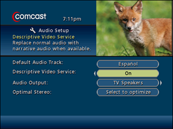 Audio Setup screen with On highlighted.