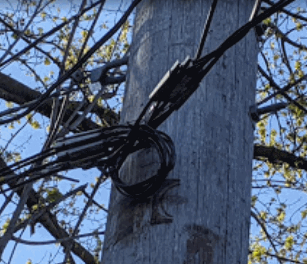 Coax affixed to pole