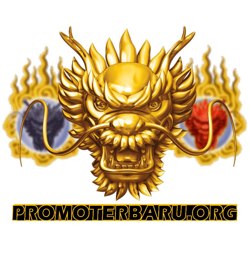 promoterbaru's profile